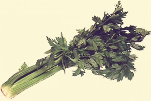 celeri-mou
