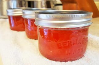 Recette facile de confiture de melon d'eau